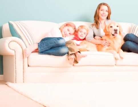 Clean my home - A&G Chem-Dry Superior Carpet Cleaning