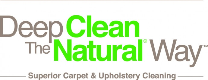 how to naturally clean the upholstery on the seats