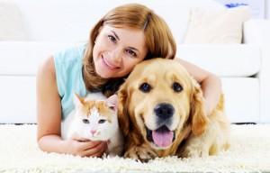 Pets Carpit Cleaing