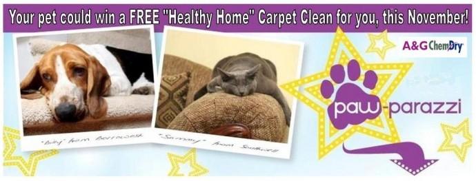 A&G Chem-Dry Paw-Parazzi Pet Photo Contest