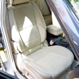 Chem-Dry Professional  Fabric Protector - Perfect for Pale car upholstery